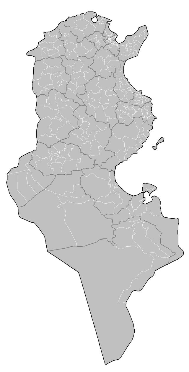 Tunisia_delegations